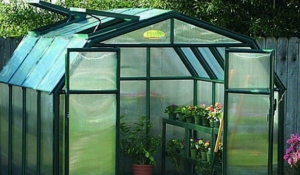 protect plants in winter with a greenhouse