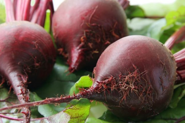 Fall Garden Plants - Beets