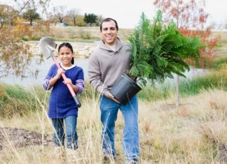 How to Plant Fruit Trees in Late Fall