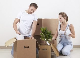 How to Pack Plants for Moving