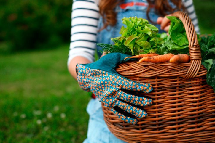How to Protect Your Skin While Gardening