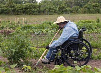 gardening with disabilities