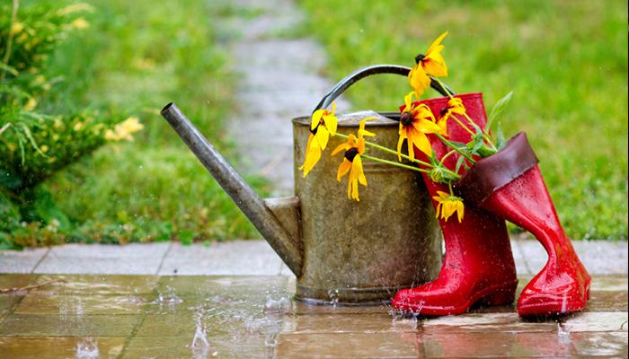 weatherproof garden