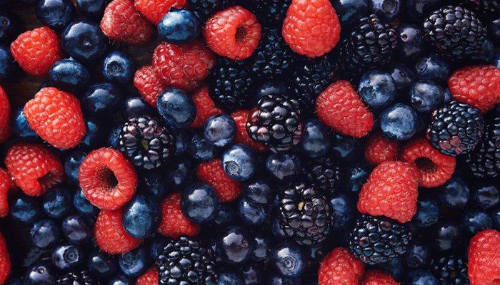 grow berries raised bed