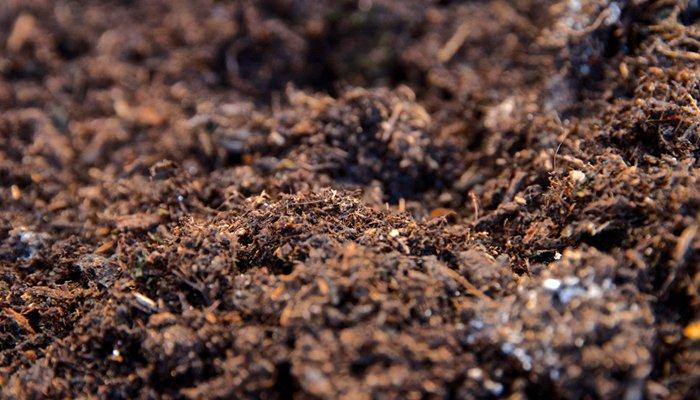 sheet composting