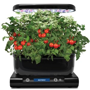 Indoor Hydroponic System