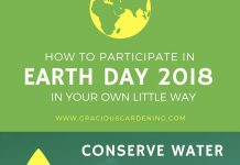 how to participate in earth day