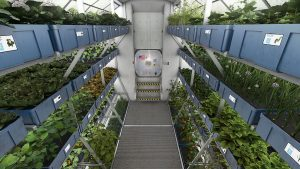 hydroponics for space travel