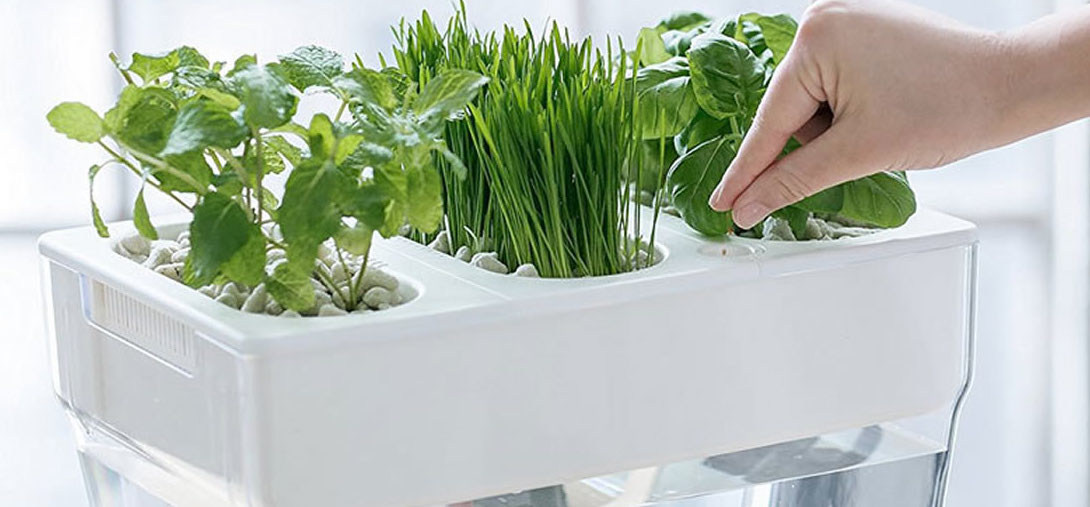 Exceptionnel Hydroponics, Or Creating An Indoor Hydroponic Garden, May Sound Like A  Futuristic Idea But It Is Not. It Is Part Of Hydroculture, The Practice Of  Growing ...